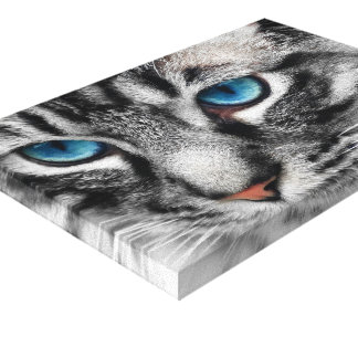 A-PAL 12x8 Silver Tabby Cat with Blue Eyes Gallery Wrapped Canvas