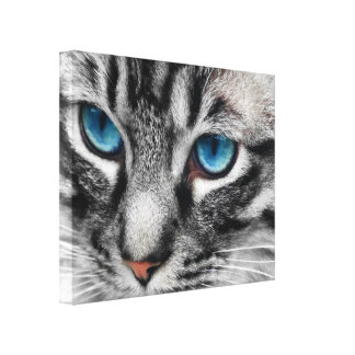 A-PAL 20x16 Silver Tabby Cat with Blue Eyes Canvas Print