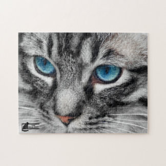 A-PAL - El gato de Tabby de plata con los ojos azu Puzzles Con Fotos