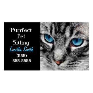 A-PAL - El gato de Tabby de plata con los ojos azu Tarjeta Personal