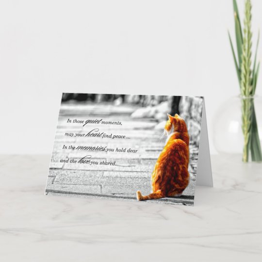 a pal orange tabby cat pet sympathy card zazzle com