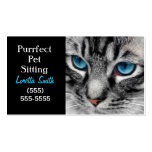 A-PAL - Silver Tabby Cat with Blue Eyes Close Up Double-Sided Standard Business Cards (Pack Of 100)