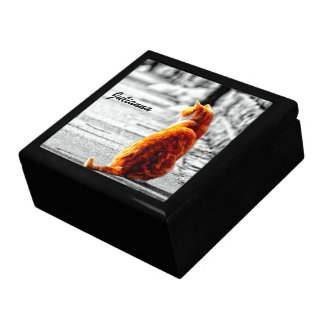 A-PAL Tinted Orange Tabby Cat Painting Custom Jewelry Boxes