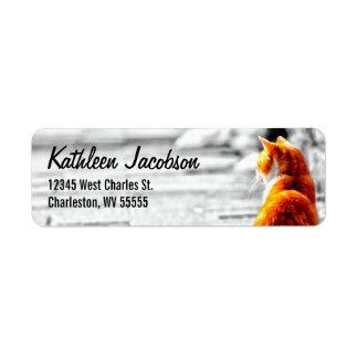 A-PAL Tinted Orange Tabby Cat Painting Custom Return Address Label