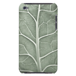 A pale leaf, partially out of focus barely there iPod cover