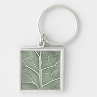 A pale leaf partially out of focus keychain