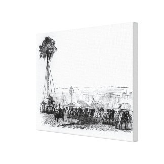 A palm tree being transported to Hyde Park for the Canvas Print