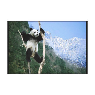 A Panda In a tree  Wrapped Canvas Print