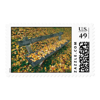 A Park Bench in the Fall Postage