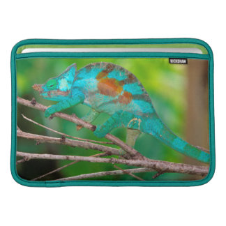 A Parson's Chameleon moving along a branch 2 MacBook Air Sleeve
