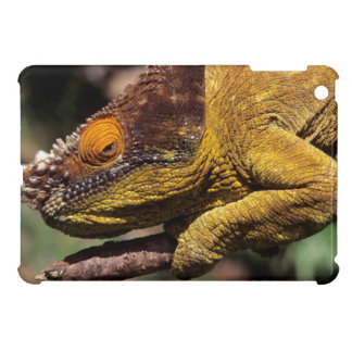 A Parson's Chameleon perched on a branch iPad Mini Case