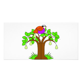 A Partridige in a Pear Tree Card