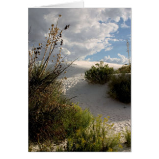 A Path of Sand - Greeting Card