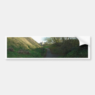 A path through a lot of greenery including bushes car bumper sticker