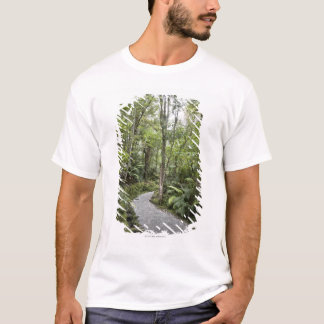 A path through a rain forest at the base of T-Shirt