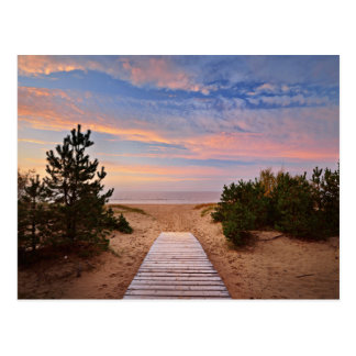 A Path Through The Sand Dunes And The Baltic Sea S Postcard