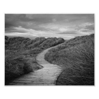 A Path to Where? Photo Print