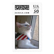 A Patriotic Kitten on July 4 Postage