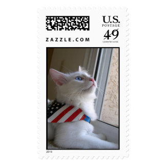 A Patriotic Kitten on July 4 Postage Stamps