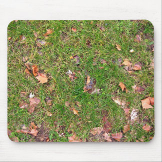 A Pattern Of Dried Fallen Leaves Mouse Pad