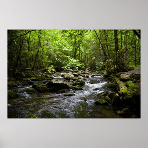 A Peaceful Smoky Mountain Stream Poster