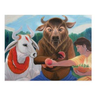 A Peach For Nandi Postcard