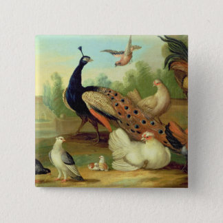 A Peacock, Doves, Chickens and a Jay in a Park Button