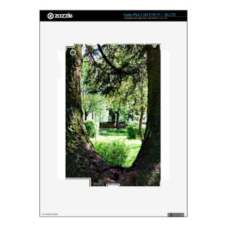 A Peak Of Nature.JPG Decal For iPad 3