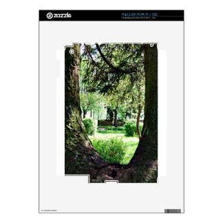 A Peak Of Nature.JPG Skin For iPad 2