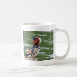 A peculiar bird coffee mug