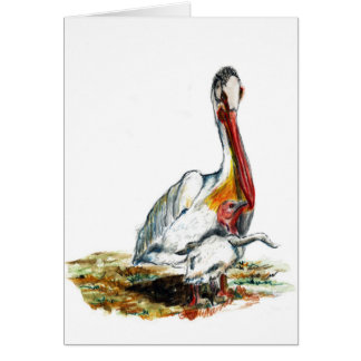 A Pelican and Chick, watercolor pencil Card