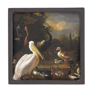 A Pelican and Other Birds Near a Pool Jewelry Box