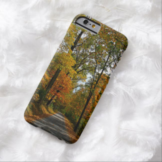 A Perfect Autumn Day phone cover