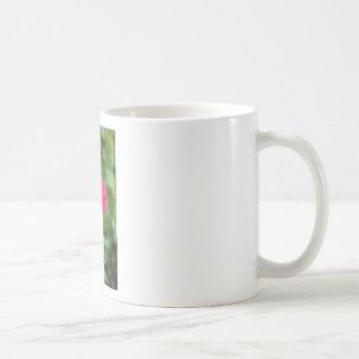 A perfect poppy flower coffee mug