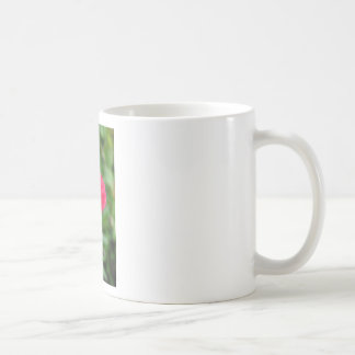 A perfect poppy flower classic white coffee mug