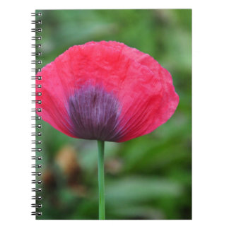 A perfect poppy flower spiral note book