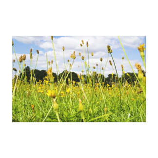 A perfect summers day canvas print