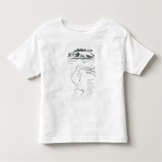 A Perspective View of Lake George Toddler T-shirt
