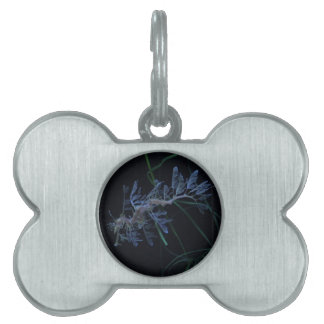 a Pet Tag - Customized