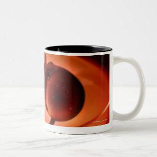 A Petri Dish Two-Tone Coffee Mug