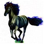 a Pharm Horse Photo Cutout