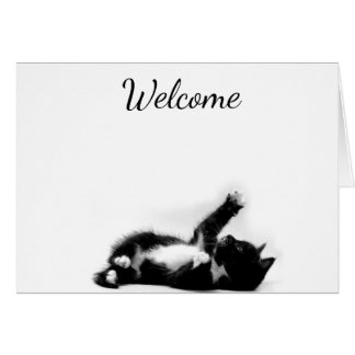 A photo of a Black and white kitten greeting card
