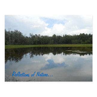 A Photo tells alot.. Postcard