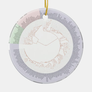 A phylogenetic tree of life Chart Ceramic Ornament