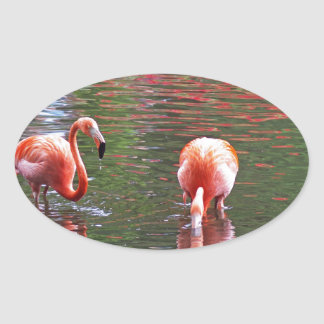 A piece of the paradise flamingo sticker