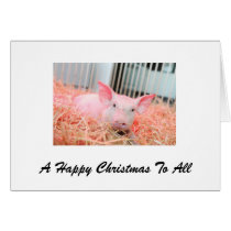 A pig happy Christmas for all Card
