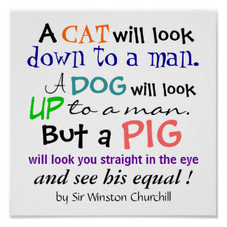 A PIG Quote by Sir Winston Churchill Poster