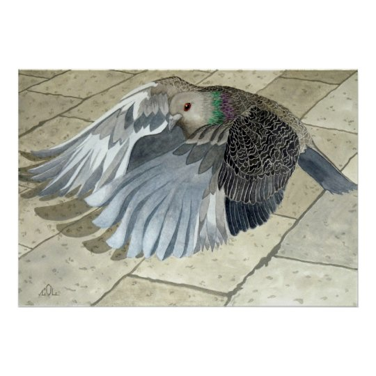 A Pigeon in flight Poster