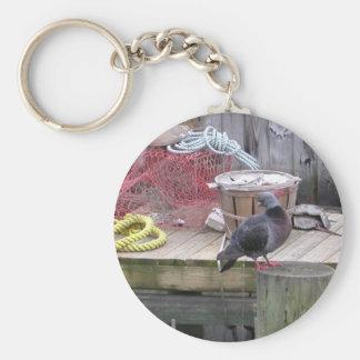 A Pigeon Setting On A Pylon. Key Chains