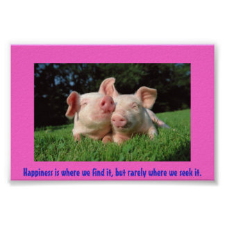 A pigs life poster